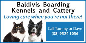 "*Baldivis Boarding Kennels and Cattery - Phone <a href=""tel:95241056"">9524 1056</a> - Cattery Baldivis"