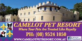 *Camelot Pet Resort - Pets Boarding Kennels Karnup Rockingham