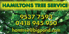 *Hamiltons Tree Service - Phone 9537 7593 - Stump Grinding Mandurah