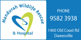 Mandurah Wildlife Hospital