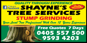 *Shayne's Tree Services - Phone 9593 4203 - Stump Grinding Port Kennedy Rockingham